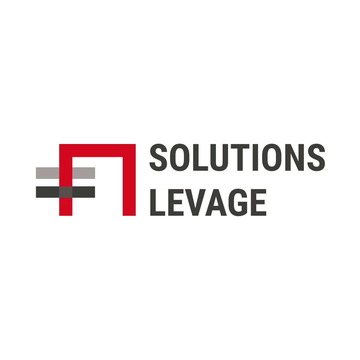 Logo Solution Levage - Par Cyan Concept